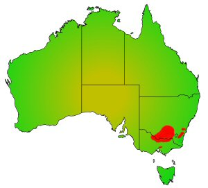 Macquarie Perch distribution area