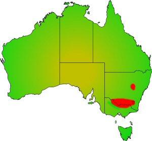 Trout Cod distribution area